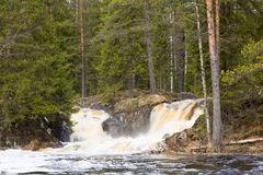Waterfall in the forest. The waterfall flows into the river Stock Photo