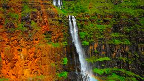 Waterfall in the forest in hawaii || A towering Akaka Falls in Hilo, Hawaii cascades 400 feet to a natural pool royalty free stock photo