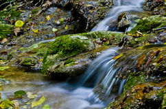 Waterfall in the forest. An image of forest river with small waterfall and rocks with lichens on them, long exposure Stock Images