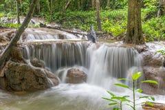 Waterfall and forest at Kanjanaburi, Thailand Aug 2016 Stock Photo