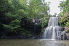Waterfall from the forest. Landscape of waterfall Stock Images