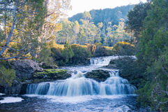 Waterfall in forest. Landscape with beautiful cascade waterfall in forest Royalty Free Stock Photo