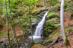 Waterfall in a forest. Waterfall in macdonia national park. In the deep forest on ecological clean environment mountain Royalty Free Stock Photography