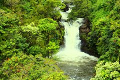 Waterfall in forest on Maui Stock Photo