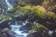 Waterfall in the forest. With moss stones Stock Photos