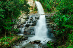 Waterfall in a forest on the mountain Royalty Free Stock Images