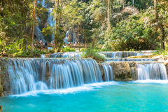 Waterfall in forest, names  Tat Kuang Si Waterfalls Stock Photography