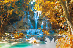 Waterfall in forest, names  Tat Kuang Si Waterfalls Stock Images