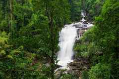 Waterfall in forest Stock Images