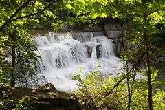 Waterfall in the forest Park Royalty Free Stock Photography