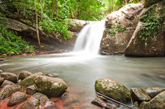 Waterfall in forest Royalty Free Stock Photo