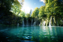 Waterfall in forest,  Plitvice Royalty Free Stock Photo