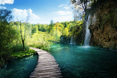 Waterfall in forest,  Plitvice, Croatia Royalty Free Stock Image