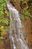 Waterfall in a Forest Royalty Free Stock Photo