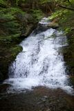 Waterfall on forest stream stock photo