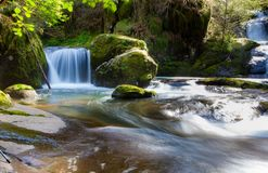 Waterfall in forest stream stock photos