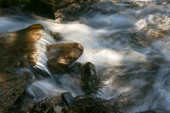 Waterfall and forest stream Stock Photography