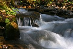 Waterfall and forest stream Stock Photos