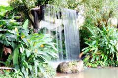 Waterfall in the forest. Royalty Free Stock Photography