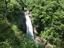 Waterfall in a forest. In Tohoku, Japan Stock Photography