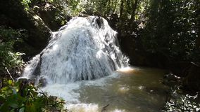 Waterfall in forest Tropical stock video footage