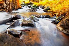 Waterfall in forest , warm tone Royalty Free Stock Photo