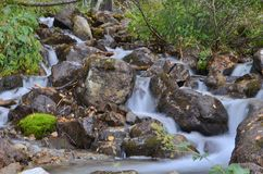Waterfall in the forest. Flowing water slowly Royalty Free Stock Photo
