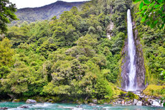 Waterfall in the forest in Westland National Park, New Zealand Stock Images