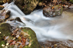 Waterfall Royalty Free Stock Images