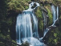 Waterfall in the forrest Stock Images