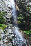 Waterfall in Strathcona park Canada Royalty Free Stock Image