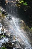 Waterfall in Strathcona park Canada Royalty Free Stock Photos