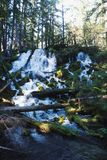 Waterfall in a Forrest stock images