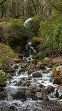 Waterfall found in devon and cornwall. A waterfall found in Cornwall and devon, England Royalty Free Stock Photo