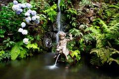 Waterfall and fountain in tropical garden in Madeira Stock Photos