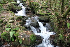 Waterfall Fragas do Eume. Water running in the woods, Fragas do Eume, Galicia, Spain Royalty Free Stock Photos