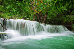 Waterfall in fresh green forest Stock Photos