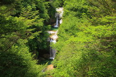 Waterfall of fresh green Royalty Free Stock Images