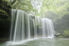 Waterfall in fresh green Stock Photography