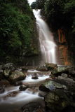 Waterfall. A fresh situation in the waterfall area Stock Photos