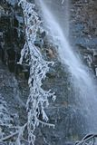 Waterfall & Frozen Branches Stock Photography