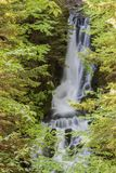 Waterfall in Fundy National Park, New Brunswick, Canada.  Royalty Free Stock Photo