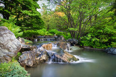 Waterfall in the garden stock photos
