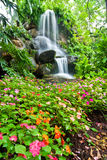 Waterfall and Garden Royalty Free Stock Images