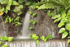 Waterfall in garden Stock Photo