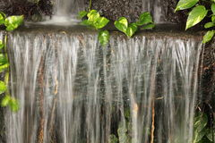Waterfall in garden Royalty Free Stock Photo