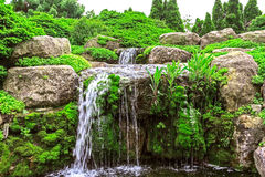 Waterfall in the garden Stock Images