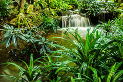 Waterfall in garden design. Royalty Free Stock Photo