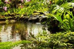 Waterfall in garden design. Stock Photos