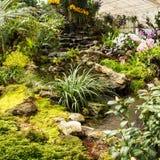 Waterfall in garden design. Stock Image